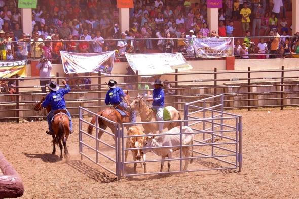 Masbate Rodeo 2014 106