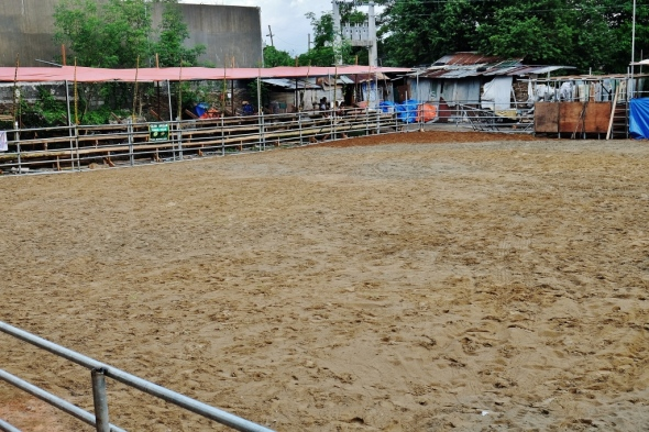 the improvised rodeo arena